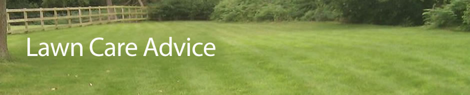 banner_lawn-care-advice