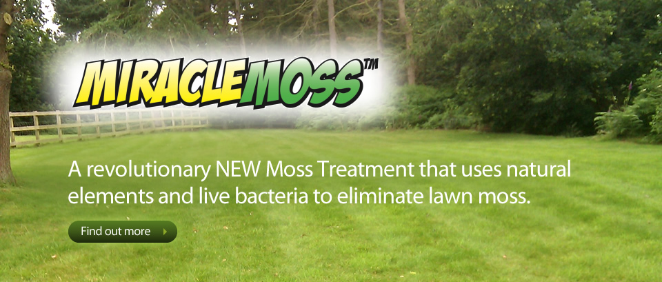 Lawn 3 Miracle Moss