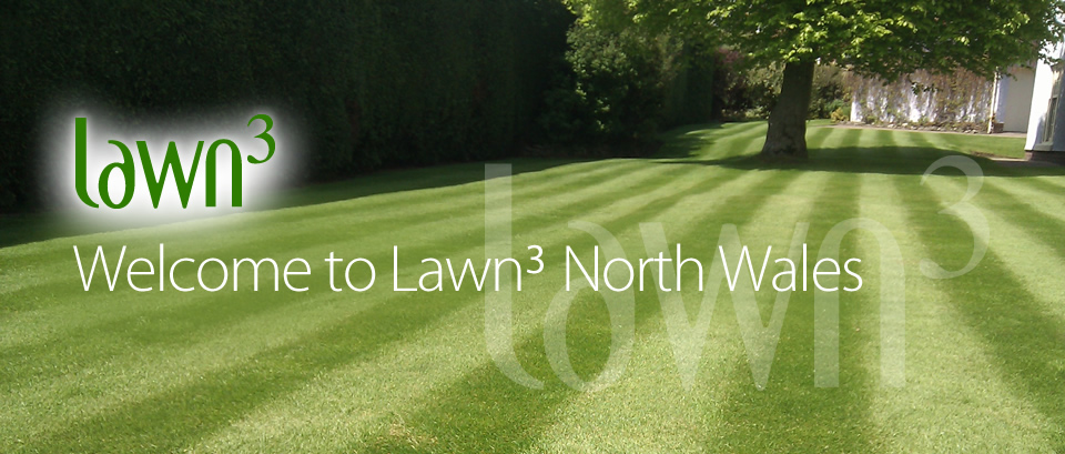 Welcome to Lawn 3 North Wales